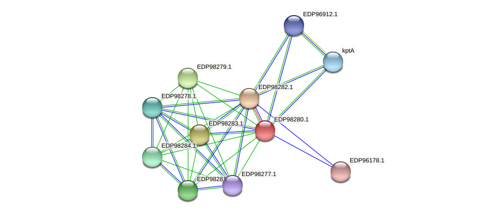 KAOT1_13722 protein (Kordia algicida) - STRING interaction network