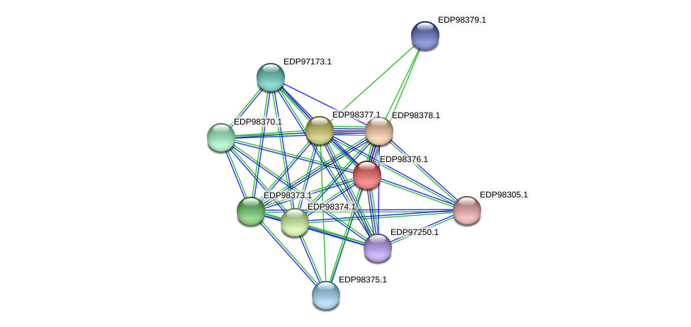 KAOT1_14202 protein (Kordia algicida) - STRING interaction network