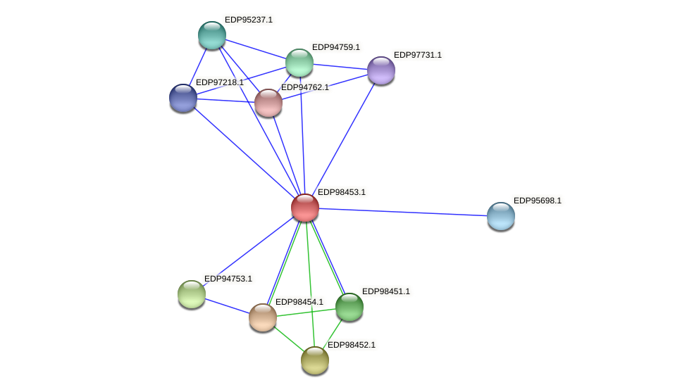KAOT1_14587 protein (Kordia algicida) - STRING interaction network