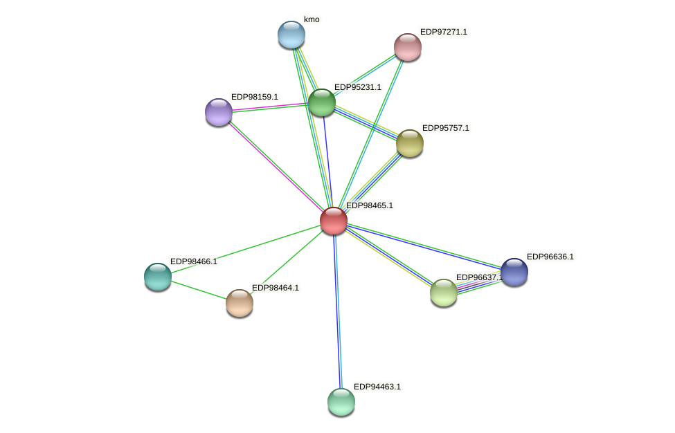 KAOT1_14647 protein (Kordia algicida) - STRING interaction network