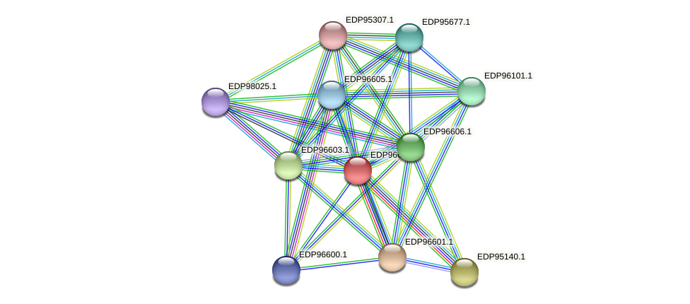 KAOT1_15603 protein (Kordia algicida) - STRING interaction network
