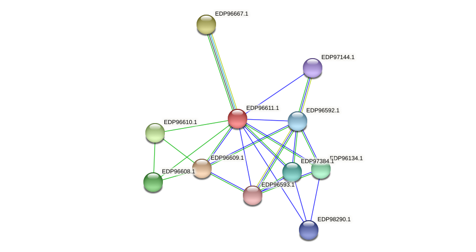 KAOT1_15648 protein (Kordia algicida) - STRING interaction network