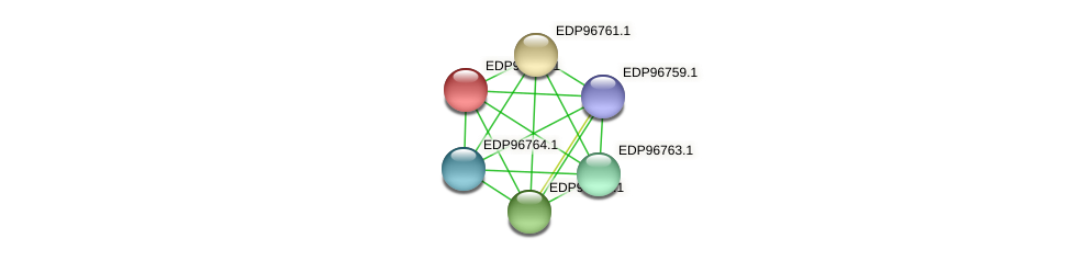 KAOT1_16393 protein (Kordia algicida) - STRING interaction network