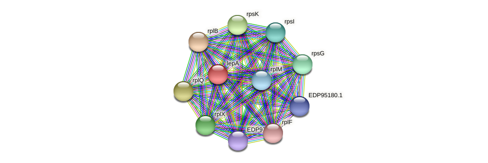 lepA protein (Kordia algicida) - STRING interaction network