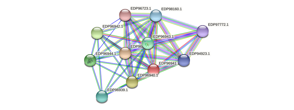 KAOT1_17298 protein (Kordia algicida) - STRING interaction network