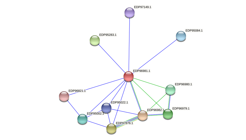 KAOT1_17498 protein (Kordia algicida) - STRING interaction network