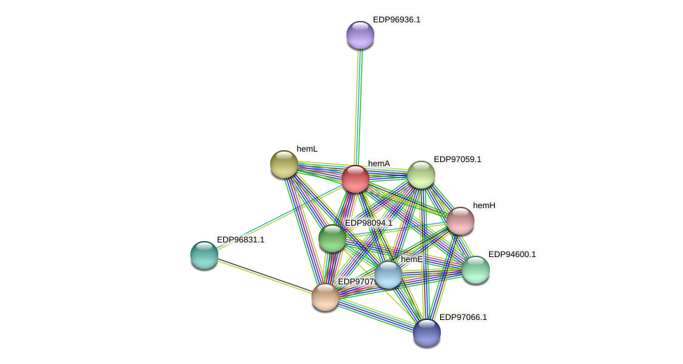 hemA protein (Kordia algicida) - STRING interaction network