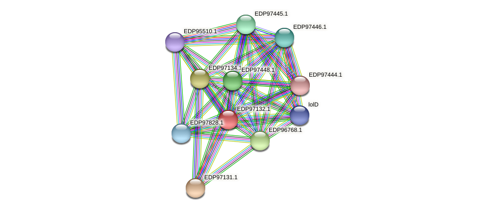 KAOT1_18257 protein (Kordia algicida) - STRING interaction network