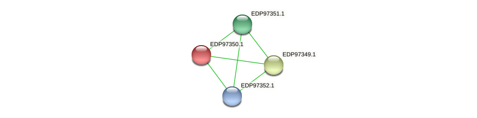 KAOT1_19347 protein (Kordia algicida) - STRING interaction network
