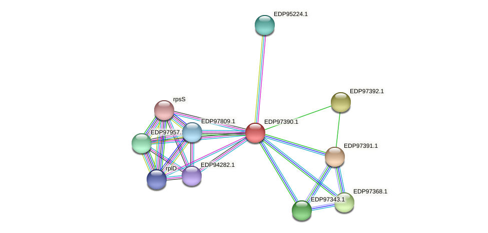 KAOT1_19547 protein (Kordia algicida) - STRING interaction network
