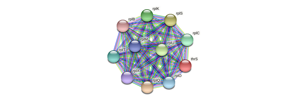 thrS protein (Pedobacter sp. BAL39) - STRING interaction network