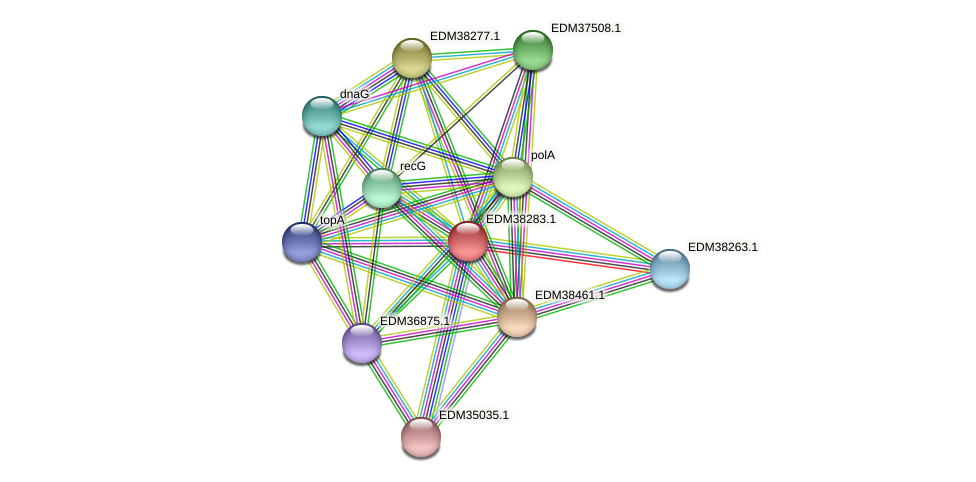 PBAL39_01672 protein (Pedobacter sp. BAL39) - STRING interaction network