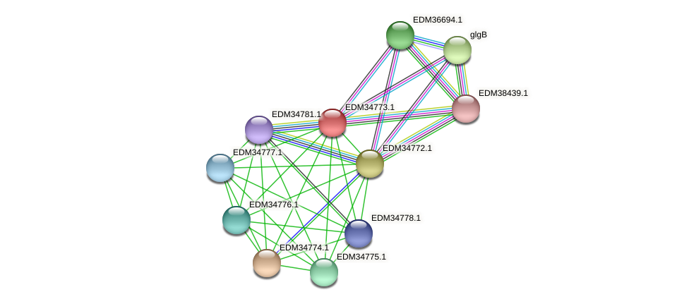 PBAL39_02715 protein (Pedobacter sp. BAL39) - STRING interaction network