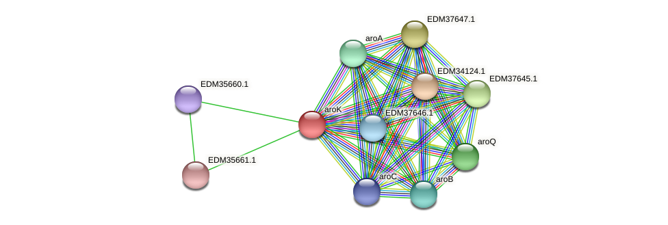 aroK protein (Pedobacter sp. BAL39) - STRING interaction network