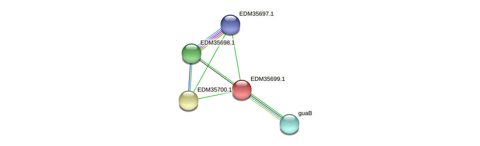 PBAL39_04119 protein (Pedobacter sp. BAL39) - STRING interaction network