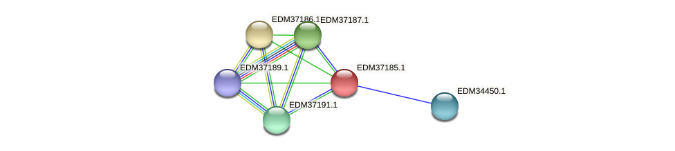 PBAL39_05283 protein (Pedobacter sp. BAL39) - STRING interaction network