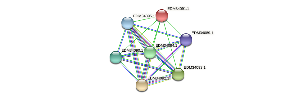PBAL39_05763 protein (Pedobacter sp. BAL39) - STRING interaction network