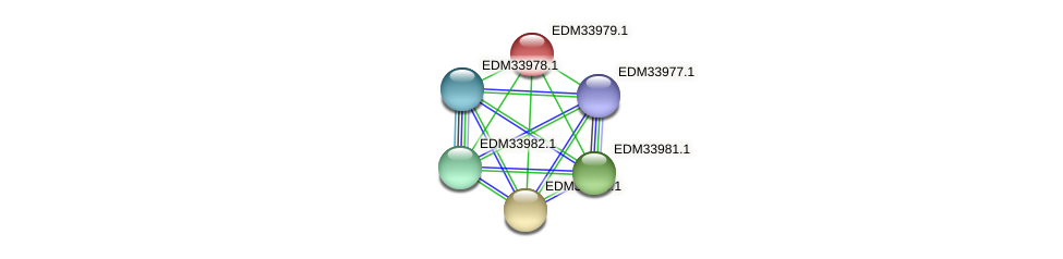 PBAL39_05843 protein (Pedobacter sp. BAL39) - STRING interaction network