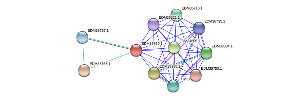 PBAL39_06306 protein (Pedobacter sp. BAL39) - STRING interaction network