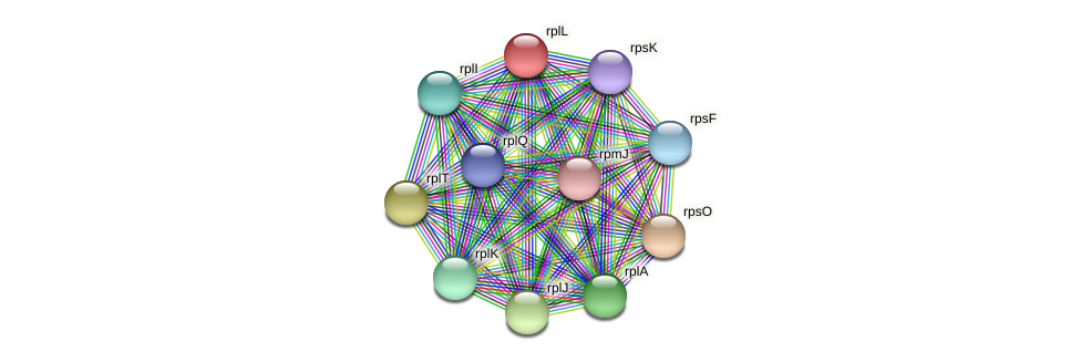 rplL protein (Pedobacter sp. BAL39) - STRING interaction network