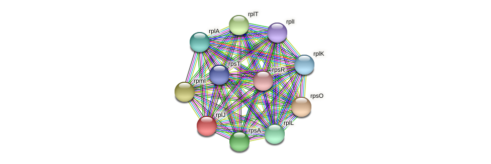 rplJ protein (Pedobacter sp. BAL39) - STRING interaction network