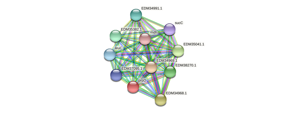 prpD protein (Pedobacter sp. BAL39) - STRING interaction network