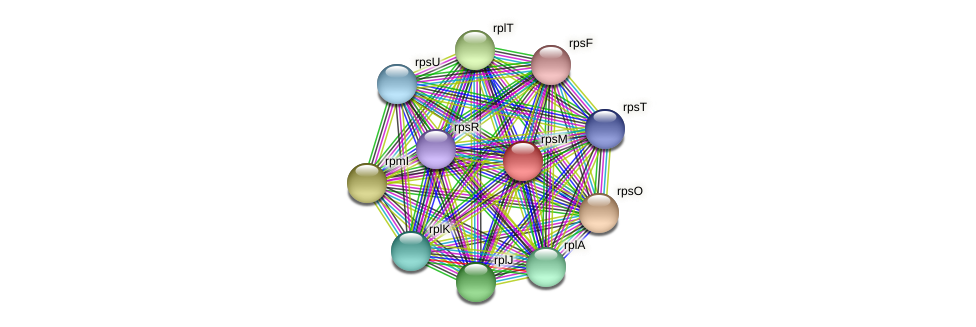 rpsM protein (Pedobacter sp. BAL39) - STRING interaction network