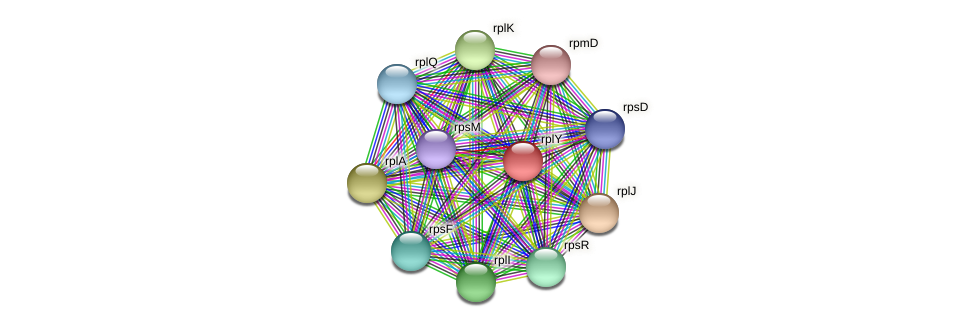 ctc protein (Pedobacter sp. BAL39) - STRING interaction network