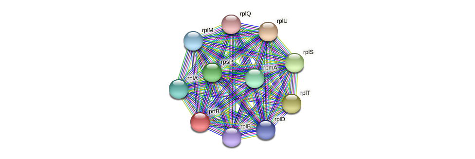 PBAL39_09741 protein (Pedobacter sp. BAL39) - STRING interaction network