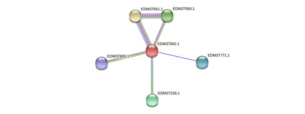 PBAL39_10471 protein (Pedobacter sp. BAL39) - STRING interaction network