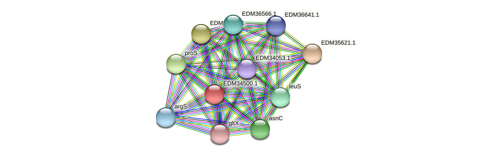 PBAL39_10900 protein (Pedobacter sp. BAL39) - STRING interaction network