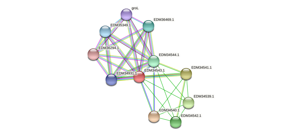 PBAL39_11115 protein (Pedobacter sp. BAL39) - STRING interaction network
