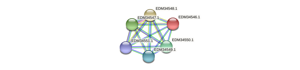 PBAL39_11130 protein (Pedobacter sp. BAL39) - STRING interaction network