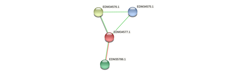 PBAL39_11285 protein (Pedobacter sp. BAL39) - STRING interaction network