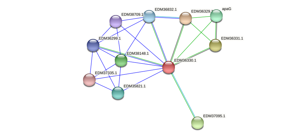 PBAL39_11517 protein (Pedobacter sp. BAL39) - STRING interaction network