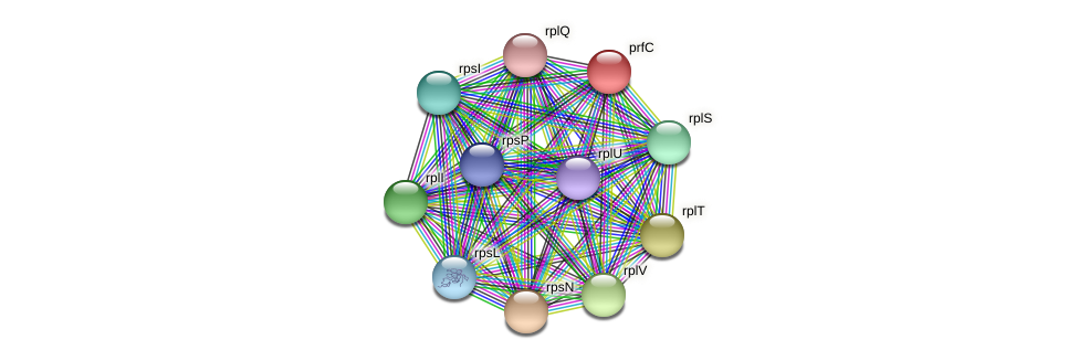 prfC protein (Pedobacter sp. BAL39) - STRING interaction network