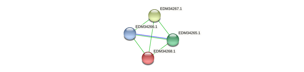 PBAL39_12408 protein (Pedobacter sp. BAL39) - STRING interaction network