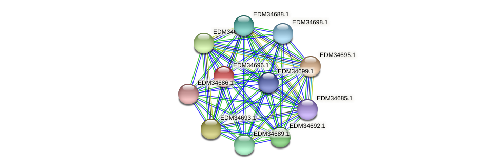 PBAL39_14104 protein (Pedobacter sp. BAL39) - STRING interaction network