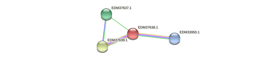 PBAL39_14474 protein (Pedobacter sp. BAL39) - STRING interaction network