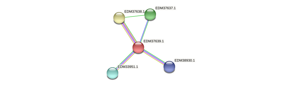 PBAL39_14479 protein (Pedobacter sp. BAL39) - STRING interaction network