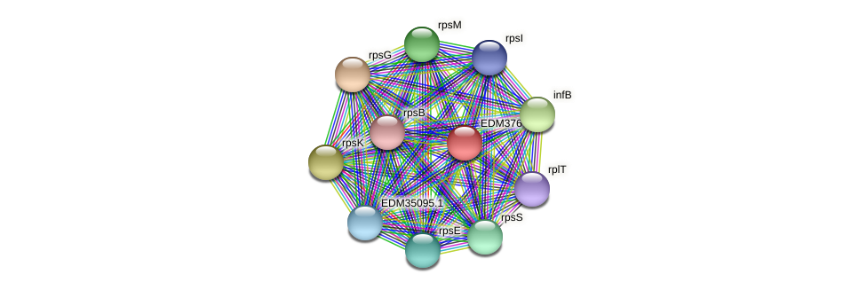 PBAL39_14679 protein (Pedobacter sp. BAL39) - STRING interaction network