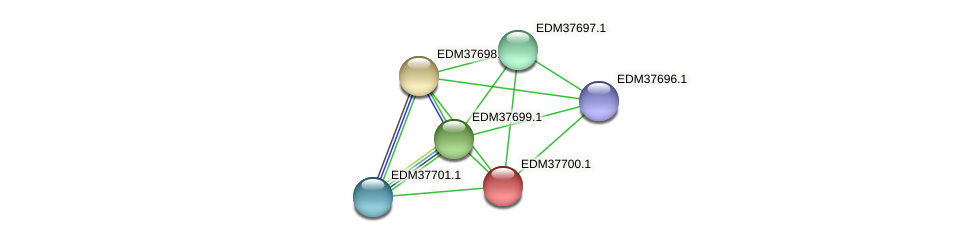 PBAL39_14784 protein (Pedobacter sp. BAL39) - STRING interaction network