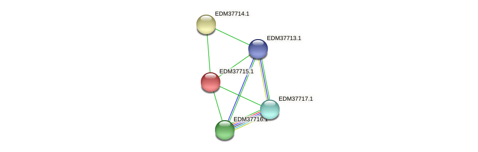 PBAL39_14859 protein (Pedobacter sp. BAL39) - STRING interaction network