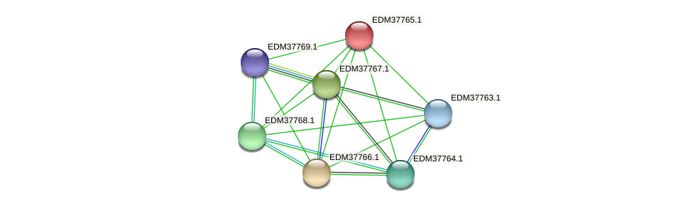 PBAL39_15109 protein (Pedobacter sp. BAL39) - STRING interaction network