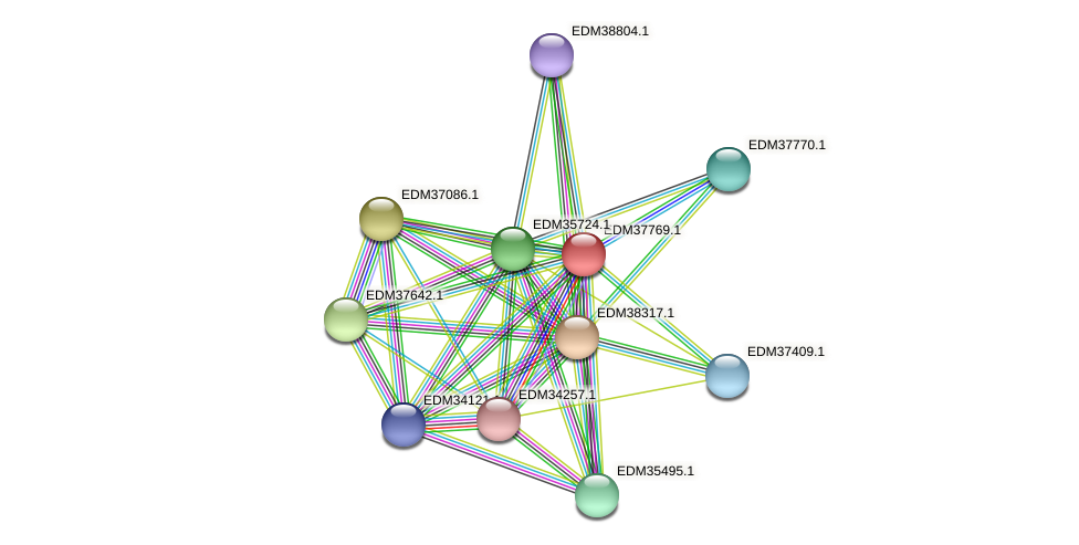 PBAL39_15129 protein (Pedobacter sp. BAL39) - STRING interaction network