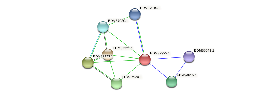 PBAL39_15894 protein (Pedobacter sp. BAL39) - STRING interaction network