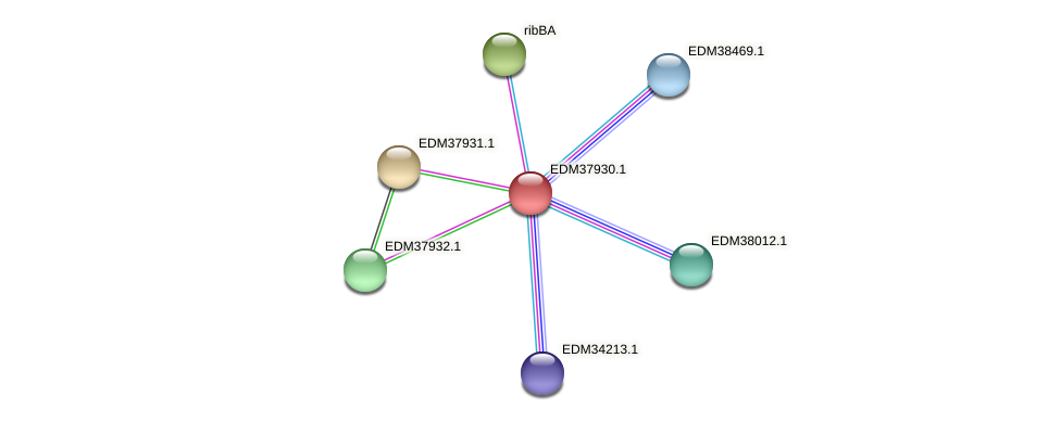 PBAL39_15934 protein (Pedobacter sp. BAL39) - STRING interaction network