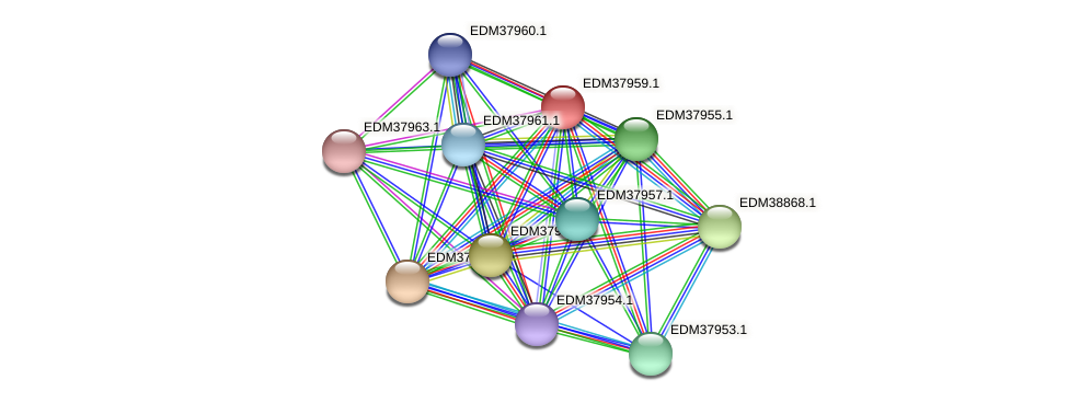 PBAL39_16079 protein (Pedobacter sp. BAL39) - STRING interaction network