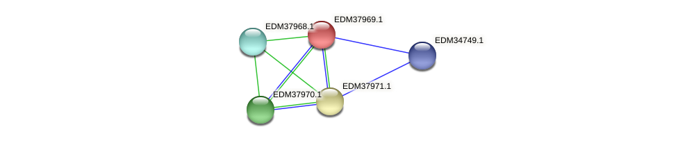 PBAL39_16129 protein (Pedobacter sp. BAL39) - STRING interaction network