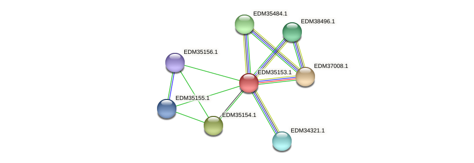 PBAL39_16766 protein (Pedobacter sp. BAL39) - STRING interaction network